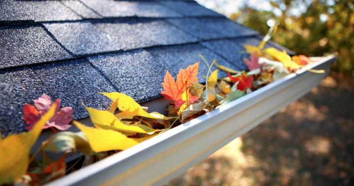 Benefits & Tips for Having Clean Gutters | South Shore Roofing